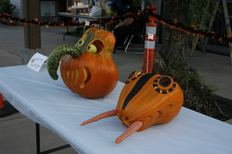 Carved Pumpkin Contest Entries