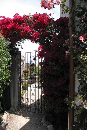 A beautiful side gate entrance leads into a private home garden selected for the Spring Garden Tour