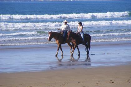 Thumbs Up Horseback Riding On The Beach